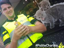Gestolen gehandicapte parkiet Pino is terug: 'De agent stopte hem in mijn handen. Toen knapte ik'