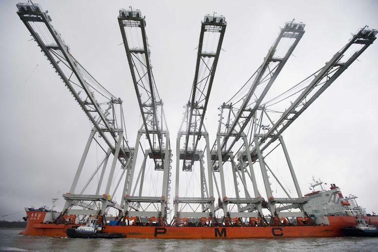 Vijf enorme kadekranen komen aan bij de haven van Rotterdam, waardoor hier de allergrootste containerschepen kunnen worden gelost. Beeld ANP