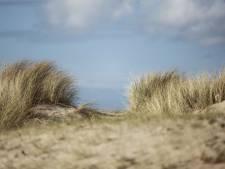Het strand blijft een magneet