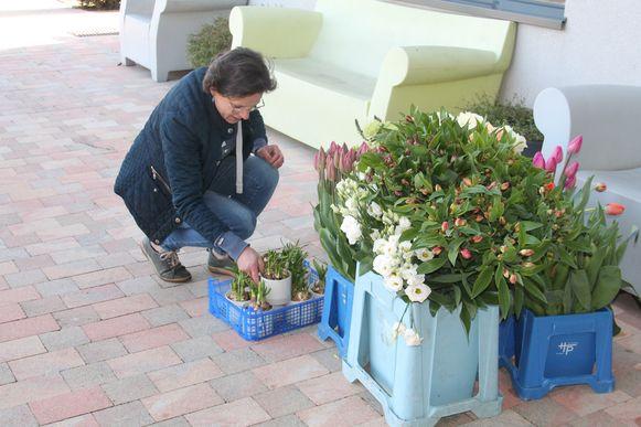 Het reuzenbezoek was de tweede verrassing dinsdag voor het wzc, want in de voormiddag kwam Isabel Dobbels van Rose Garden er ook gratis bloemen leveren