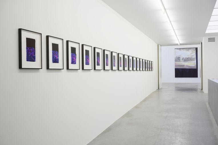Luc Tuymans tentoonstelling 'Seconds' in ZENO X GALLERY Beeld Peter Cox