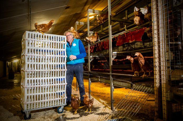 Piet Wiltenburg is blij dat na de vogelgriep weer kippen op zijn boerderij lopen. Als het aan de gemeente ligt, waren zijn stallen nu nog steeds leeg.