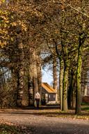 Tal van boerderijen in Twente hebben een mooie toegangsweg