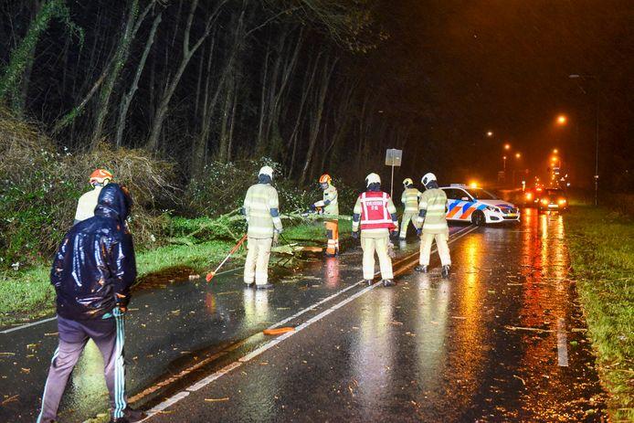 De brandweer haalde de omgewaaide boom van de weg.