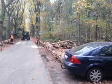 Oostappen Groep achter aanpak arbeidsmigranten Droomgaard in Kaatsheuvel, maar verrast door maatregel burgemeester