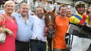 """Jean-Pierre wint na 9 jaar proberen race  op Waregem Koerse met ... 12 jaar oud paard: """"'Dit tempo houdt ze nooit vol', dacht ik de hele tijd"""""""