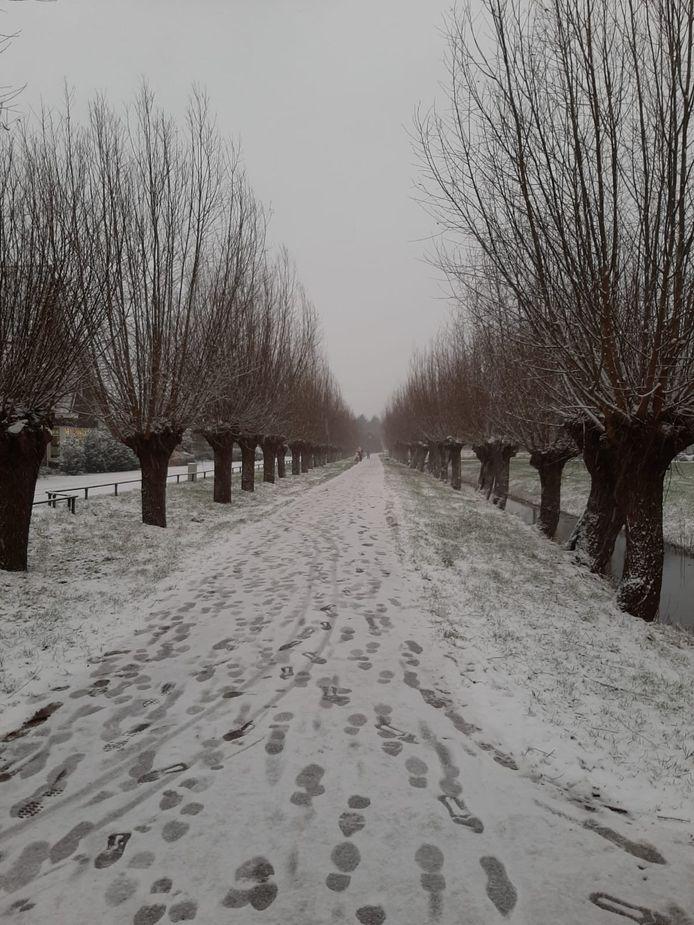 Voetsporen in de sneeuw Leidsche Rijn