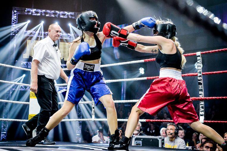 Boxing Stars.  Beeld DBA
