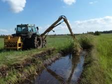 Natuurgebied De Wieden gedijt bij goed slootonderhoud