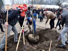 Eerste van 260 bomen in stadspark Elisabeth Groen geplant