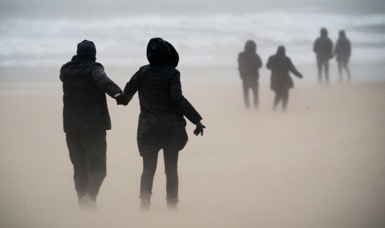 Wandelaars trotseren de wind op het strand van Scheveningen. Beeld Freek van den Bergh / de Volkskrant