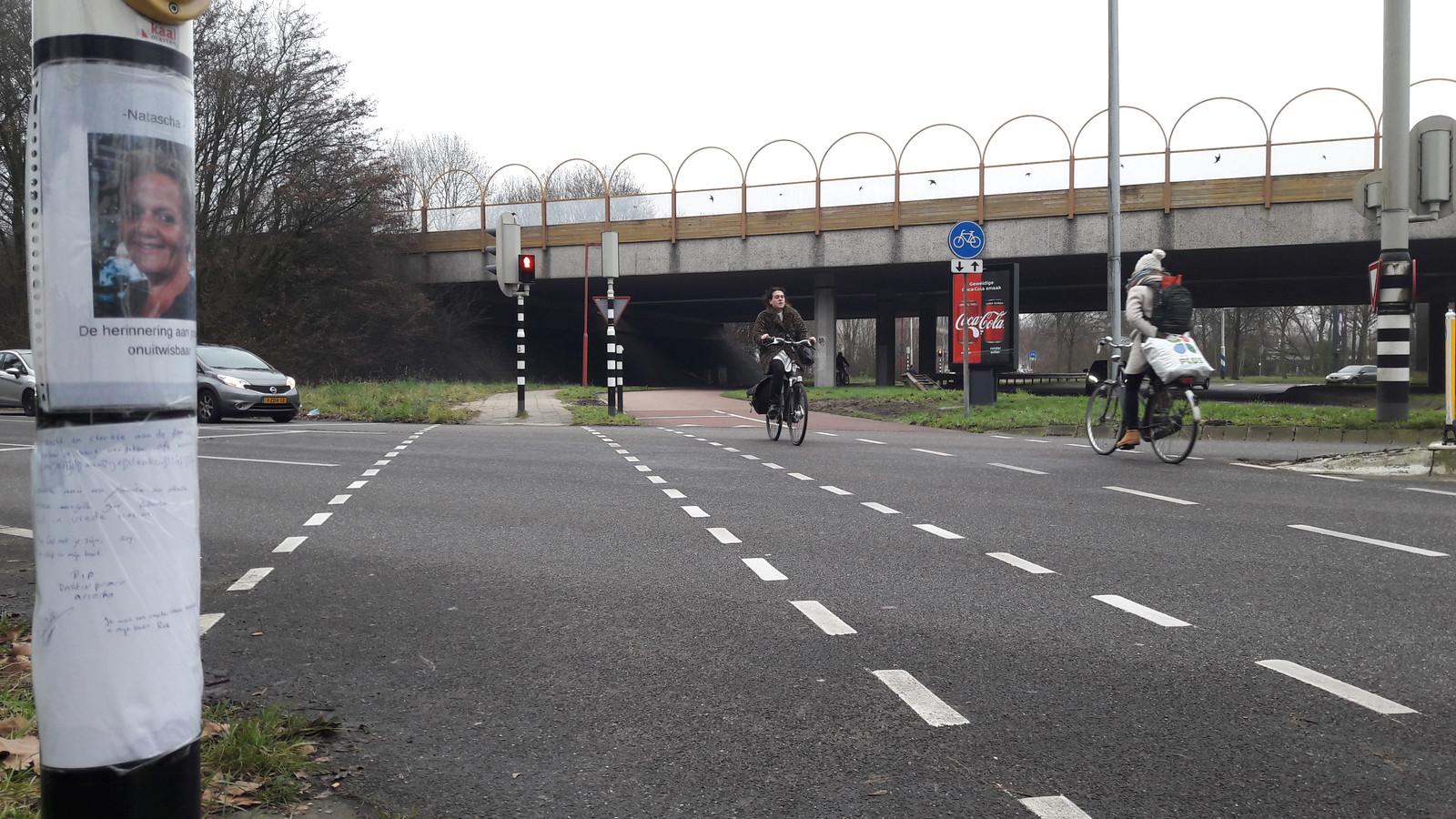 De plek van het ongeval, waar de Waterlinieweg uitkomt op 't Goyplein in Utrecht.