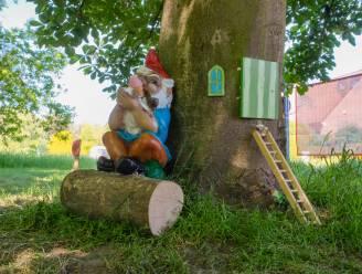 Wie nam kabouters en hun paddenstoelen mee? Kabouterparcours week na lancering al pak kaler door diefstal en vandalisme