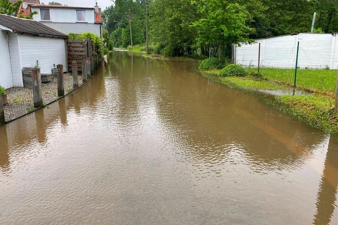 De Paddestraat aan tennis- en padelclub Kenta in Lede stond zaterdag nog altijd onder water.