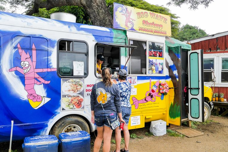 Bontgekleurde vrachtwagens waar je shrimpies kan eten. Beeld Anne-Gine Goemans