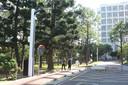 De slimme lantarenpaal van Lite-On herkent verkeersovertredingen