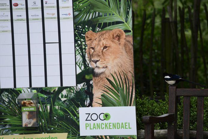 Een grote poster op dierenpark Planckendael in Mechelen.