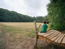 Van bomenbingo tot blotevoetenpad: Klompenpad Kids in Wageningen is leerzaam en leuk