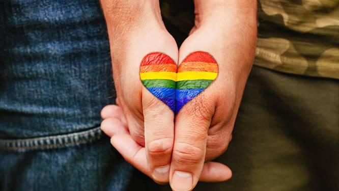Vlaams parlement strijdt verder tegen geweld tegen LGBTQ+-gemeenschap