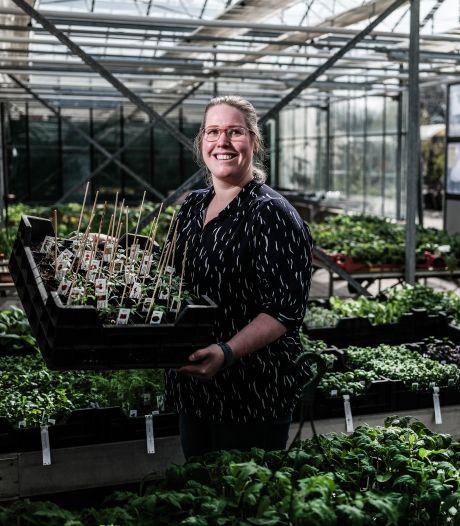 Daphne kweekt bijzondere tomatenrassen: van reizigertomaat tot Bosque Bumblebee