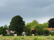 Buren weer tegen over elkaar in 'koeienconflict' Riel