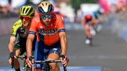 """Nibali ergert zich aan koersgedrag Roglic en belooft spektakel: """"Iedereen werkt mee, behalve hij"""""""