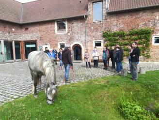 30 paardeweides hebben voortaan meer biodiversiteit in en rond de weide, met dank aan de provincie Vlaams-Brabant