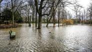 Hevige regenval zet Heulepark onder water, bypass moet probleem oplossen