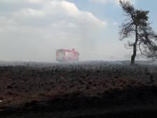 Flinke bosbrand Hoge Veluwe onder controle: 4 hectare afgebrand