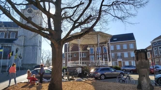 Twee parkeerplaatsen opgeofferd om Vrijheidsboom te genezen