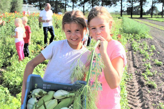 Kinderen kunnen in de herfstvakantie zien waar hun eten vandaan komt en tegelijkertijd sporten op de boerderij.