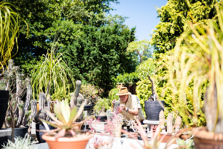 Hortulanus Art Vogel in zijn tuin in Heemstede. Beeld Katja Poelwijk