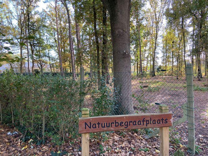Illustratiefoto van een natuurbegraafplaats in Halle-Zoersel
