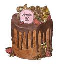 Feestelijke taart voor jarige Annie