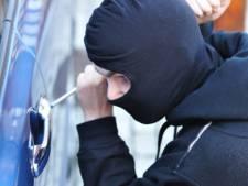'Werkloze Oost-Europeaan steeds vaker op het criminele pad'