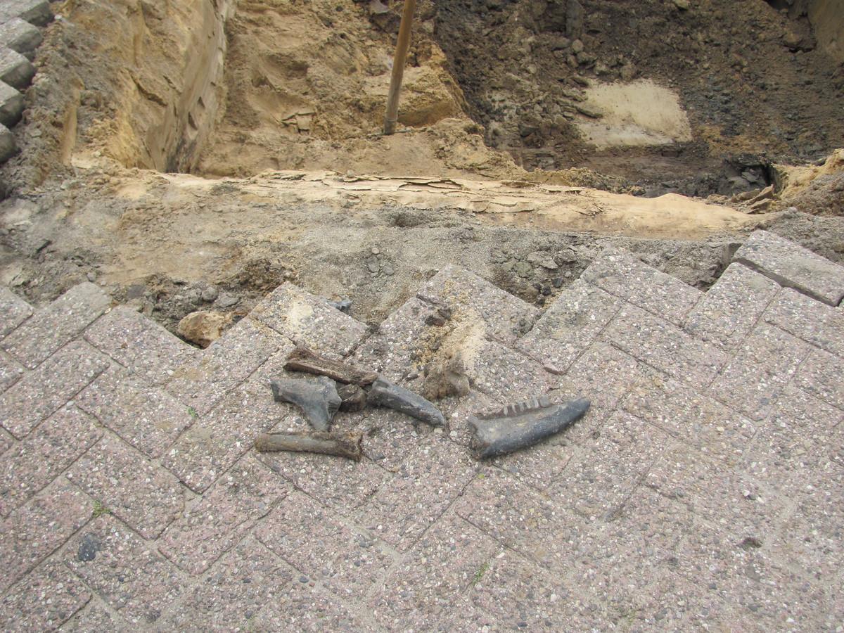 Bij de werkzaamheden aan het riool werd niet alleen een stroomkabel kapotgetrokken, er werden ook wat historische vondsten gedaan.