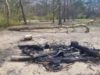 Lockdownfeestjes met kampvuur in Kloosterbos: jongere verliest gsm op de vlucht voor brandweer