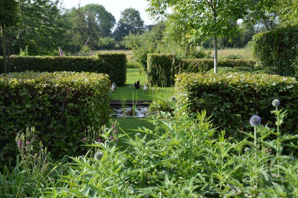 Met een haag zie je je tuin elke dag veranderen. Je voelt de seizoenen