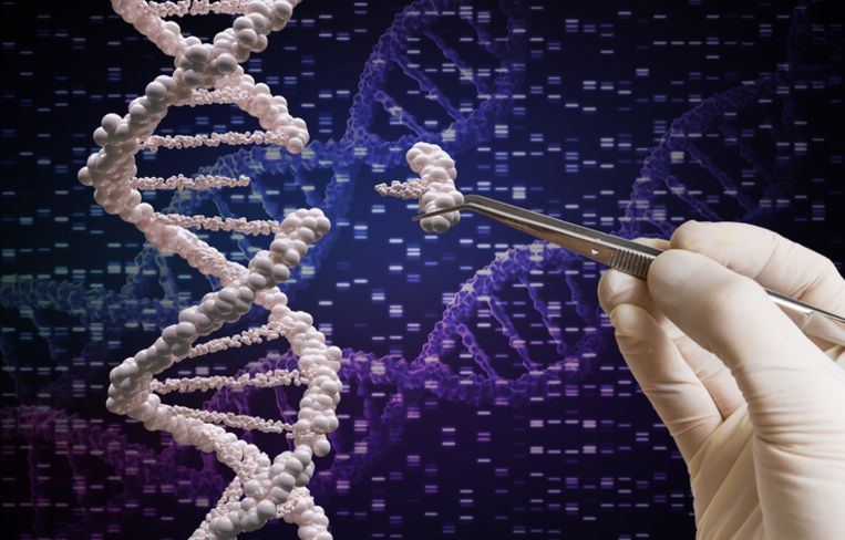 Een DNA-strip Beeld Thinkstock
