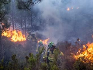 Regen geeft adempauze aan brandweerlieden in Spaanse Malaga, maar is niet genoeg om grote bosbrand onder controle te krijgen