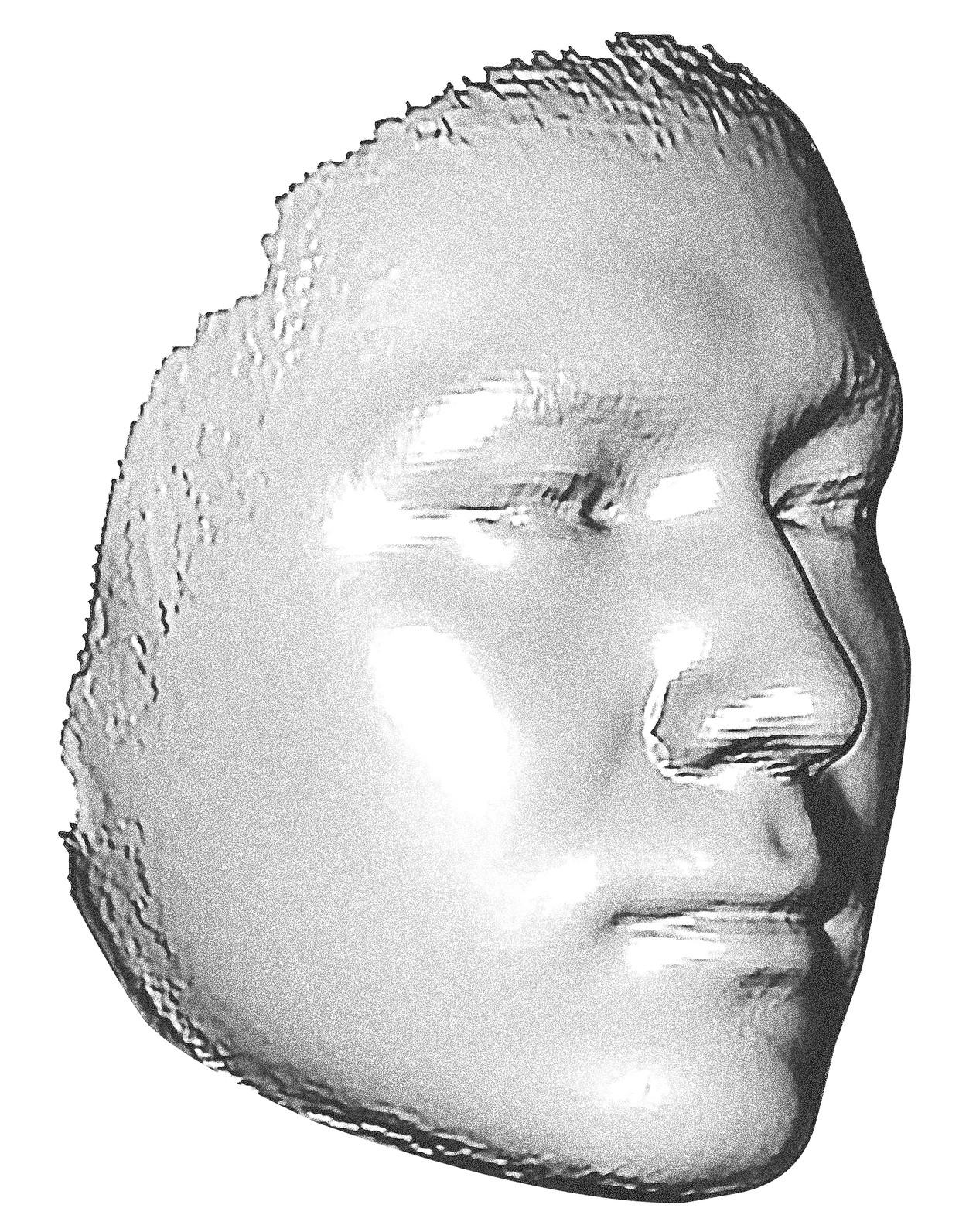 Op basis van DNA werken wetenschappers onder meer aan 3D-modellen van gezichten. Beeld rv