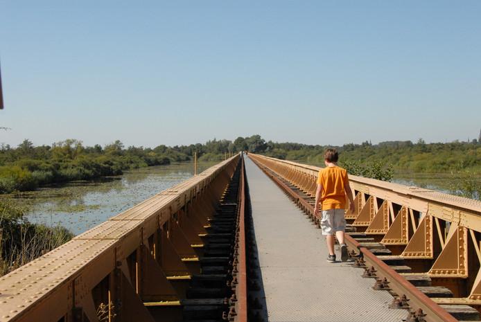 De Moerputtenbrug in natuurgebied De Moerputten bij Den Bosch krijgt weer een grote onderhoudsbeurt.