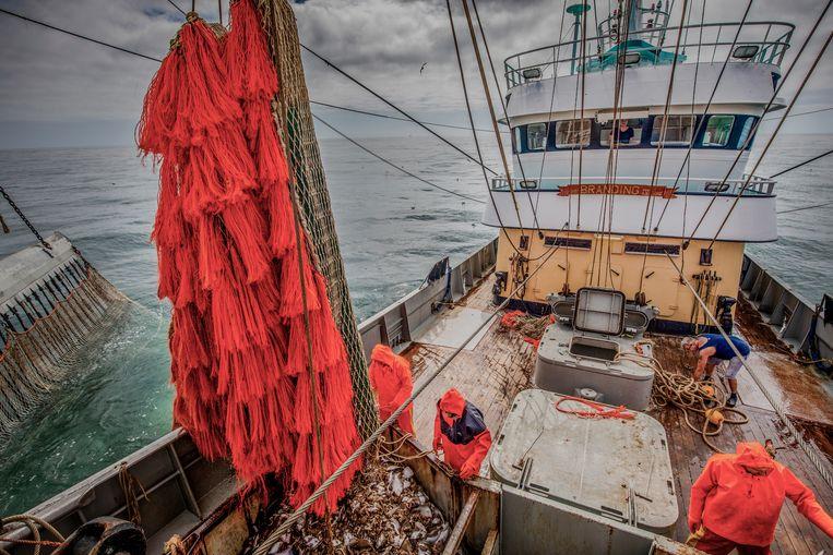 Pulsvissers op de TX38 aan het werk op de Noordzee.  Beeld ANP