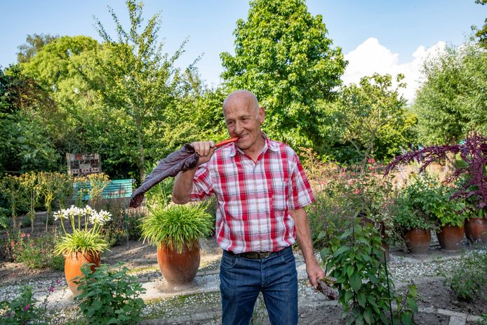 """Hans van Nieuwenhuijzen neemt een hap van een stengel van de snijbiet: ,,Eigenlijk moet je dit niet zo eten hoor. Je hoort het eerst te koken. Maar deze groentes hebben wel echt de smaak van vroeger."""""""