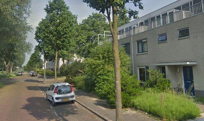 Zwanenwater in Amstelveen.