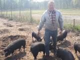 Vijf sterren voor diervriendelijkste varkensboer van Brabant