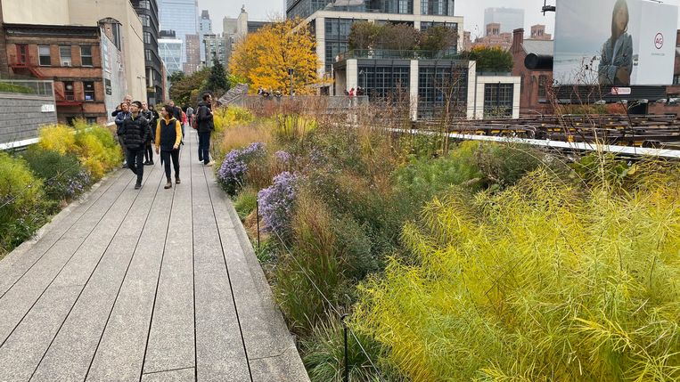The High Line in New York Beeld Piet Oudolf