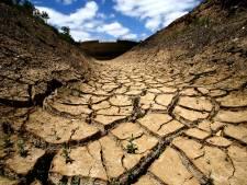 La campagne espagnole se meurt par manque d'eau