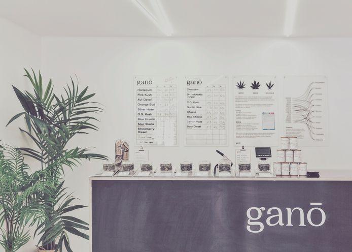 Ganō in Gent.