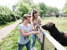 Kinderboerderij heeft last van opmerkelijk fenomeen: tienermeisje klimt over hek om pony te aaien